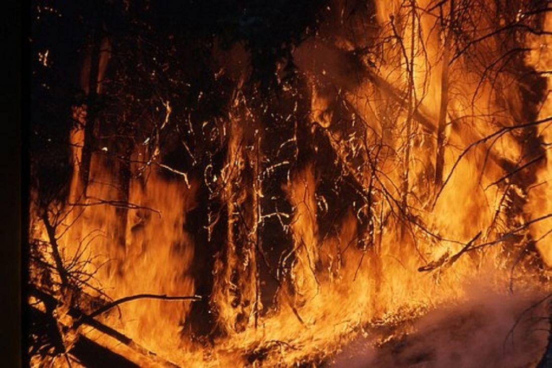 МЧС предупреждает пензенцев о высокой пожарной опасности